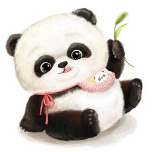 熊猫家族家族