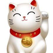 清风🐱招财猫🐱